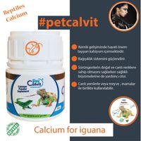 Sürüngenler için D3 süz Kalsiyum Tozu calcium powder 100 gr.